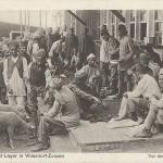 """""""Vor den Baracken. Halbmond-Lager in Wünsdorf-Zossen"""". Ansichtskarte, ungelaufen. Sammlung Detlev Brum. Fette Hammel kurz vor der Schlachtung für die gut versorgten muslimischen Gefangenen, so kann man die Aussage der Ansichtskarte zusammenfassen. In der Propaganda waren die muslimischen Gefangenen besser versorgt als die """"einfachen Leute"""", die ab Herbst 1916 zu Plünderungen übergingen (u.a. in Dortmund-Hörde)."""