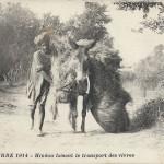 """Guerre 1914. Hindou faisant le transport des vivres"" (Hindu beim Transport von Lebensmitteln). Carte Postale, Correspondance militaire, beschriftet, ohne Datum. Sammlung Detlev Brum."