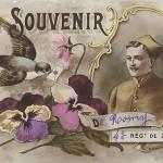 """""""Un Souvenir de Rosny. 4. Régt de Zouave"""". Carte Postale, gelaufen im März 1917. Sammlung Detlev Brum."""